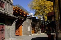 Forntida kulturgata i Tianjin, Kina Royaltyfria Bilder
