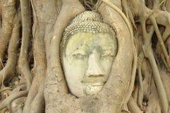 Forntida Lord Buddha Statue Arkivbilder
