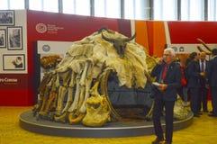 Forntida mänsklig boning Internationell arkeologisk utställning moscow Höst arkivfoto
