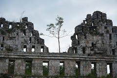 Forntida Mayan plats Uxmal, Mexico Royaltyfri Foto