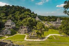 Forntida Mayas Arkivbild