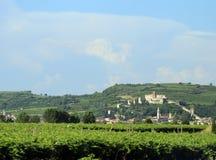 Forntida medeltida slott av soave nära den VERONA staden i Italien Royaltyfri Bild
