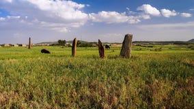 Forntida megalitstelafält, Axum, Etiopien Royaltyfria Bilder