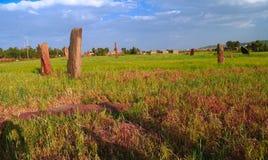 Forntida megalitstelafält i Axum på Tigray, Etiopien Arkivfoton