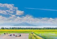 forntida metodbondeövning till kolonin, cykeln, grönt rårisfält med det härliga himmelmolnet, royaltyfri fotografi