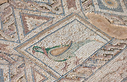 Forntida mosaik i Kourion, Cypern royaltyfri foto