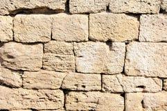 Forntida murverk av skaldjur Arkivfoto
