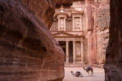 Forntida nabataean tempel Al Khazneh Treasury som lokaliseras på den rosa staden - Petra, Jordanien Två kamel i framdel av ingång Arkivbilder