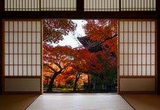 Forntida pagod och härliga röda nedgånglönnar som ses till och med en traditionell japansk dörröppning i höst royaltyfri fotografi