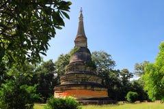 forntida pagoda Wat UMong Chiangmai, Thailand Arkivbilder