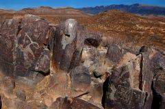 forntida petroglyphs royaltyfria foton
