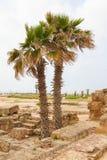 Forntida Roman City av Caesarea i Israel royaltyfri bild