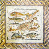 Forntida roman mosaik med den olika fisken royaltyfri bild
