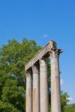 Forntida Roman Temple i Riez, Frankrike arkivbilder