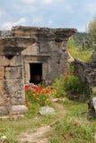 forntida sarcophagi Royaltyfri Bild