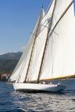 Forntida segelbåt under en regatta på den Panerai klassikern Yac Royaltyfri Foto