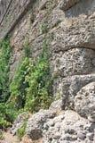 Forntida sida vägg landmark kalkon Fördärvar av den forntida staden arkivfoto