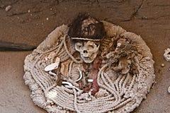 Forntida skalle och tyg Royaltyfri Bild