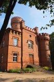 Forntida slott i Litauen Royaltyfri Foto