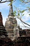 Forntida stad i historisk nationalpark i det Ayutthaya landskapet arkivbilder