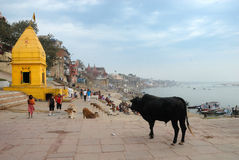 Forntida stad i Indien arkivbilder