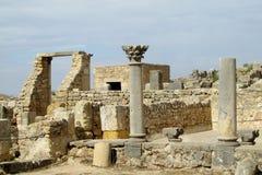 Forntida stad Volubilis Fotografering för Bildbyråer
