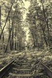 Forntida stilfoto av skogjärnvägen Arkivbild