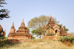 Forntida Stupas Bagan, Myanmar Royaltyfria Foton