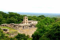 forntida tempel för mayamexico palenque royaltyfri fotografi