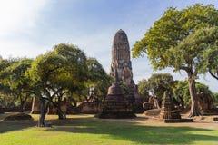 Forntida tempel under solljus med trädet Royaltyfri Fotografi