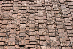 Forntida terrakottataktegelplatta, Italien Royaltyfri Foto