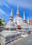 forntida thammarat för nakhonpagodasi thailand Royaltyfri Bild