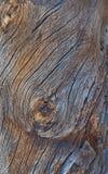 Forntida träbakgrundstextur, sprickor Arkivfoto