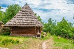 Forntida traditionell ukrainsk lantlig stuga med ett sugrörtak royaltyfri bild