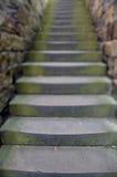 Forntida trappa Fotografering för Bildbyråer
