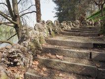 Forntida trappa vid floden Royaltyfria Foton