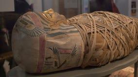 Forntida utsatt Egypten mamma stock video