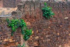 Forntida vägg av ett skydd av tempelet, Indien Royaltyfria Foton