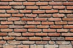 Forntida vägg och solljus Cement och tunna tegelstenar Arkivbilder