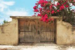 Forntida vägg och traditionell träport på den Salamina ön, Gre Royaltyfri Fotografi