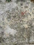 Forntida väggtextur i stad av Nerezine Royaltyfri Fotografi