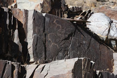 Forntida vagga teckningspetroglyphen, deers royaltyfri foto