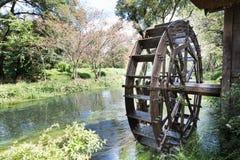 Forntida vattenhjul inom den fridfulla och sceniska floden Royaltyfria Foton