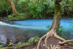 Foro blu in Rio Celeste, Costa Rica immagini stock libere da diritti