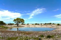 Foro di acqua Fotografia Stock Libera da Diritti