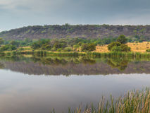 Foro di innaffiatura africano del bushveld per gli animali selvatici Fotografia Stock Libera da Diritti