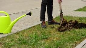 Foro di scavatura dell'uomo nel prato inglese verde della via archivi video