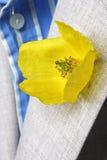 Foro di tasto giallo del papavero Fotografia Stock