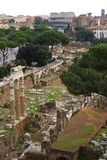 Foro Romano, Rome. Foro Romano with the Colosseum, Rome Stock Photo