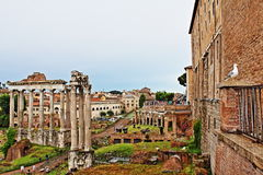 Foro Romano Rome Italy. Tabularium and the Roman Forum-Foro Romano is a rectangular forum plaza surrounded by the ruins of several important ancient government Royalty Free Stock Photo